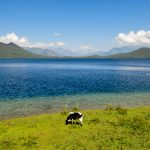 Rara Lake Trek in Mugu -Western Nepal Trek with Apex Asia Holidays