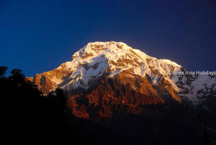Mount Annapurna South from Poon Hill in Annapurna Base Camp, and Circuit Trek