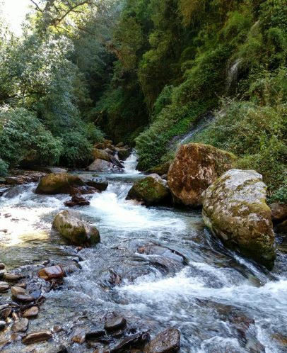 A small river along the Langtang Valley Trek with Apex Asia Holidays