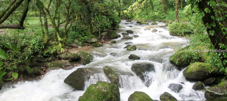Amazing streams along the Chisapani-Nagarkot-Trekking