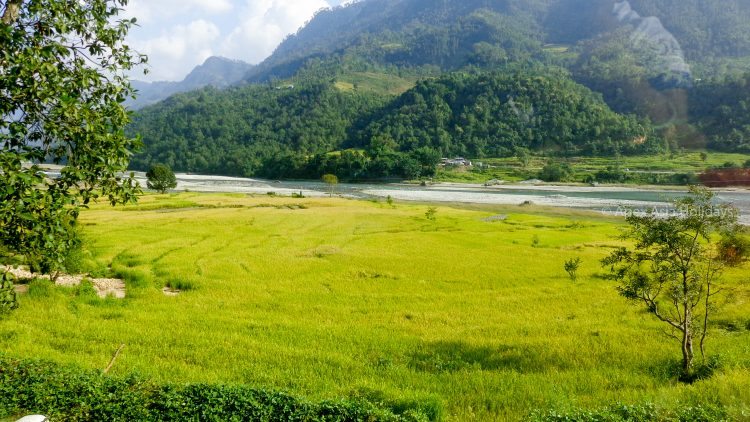 Paddy field and Gandaki River enroute of Manaslu Circuit Trek with Apex Asia Holidays